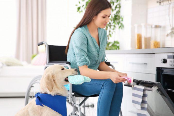 Vrouw in rolstoel met hulphond